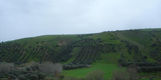 Dans la région de Larache